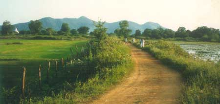 Seven hills of Kataragama with Kirivehera dagoba seen at left