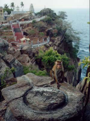 view of Koneswaram Temple, Trincomalee.
